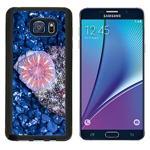msd-premium-samsung-galaxy-note-5-aluminum-backplate-bumper-snap-case-image-id-35074325-multicolor-m