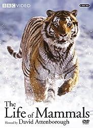 Life of Mammals V1-4