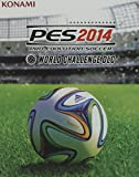 GIOCO PS3 PES 2014 WORLD
