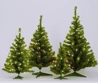 Vickerman Pre-Lit Canadian Pine Tree with 35 Multicolored Mini Lights, 36-Inch, Green