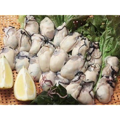 SHUEI ジャンボ生剥き牡蠣 1kg