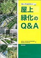 知っておきたい屋上緑化のQ&A