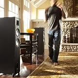 Klipsch KF-26 Icon Dual 6 1/2-Inch 2-Way Floorstanding Speaker (Black Ash)
