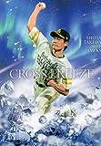 BBM2016/1st ■CROSS FREEZE カード■CF02/武田翔太/ソフトバンク ≪ベースボールカード≫