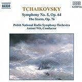 Symphony No.5, the Storm