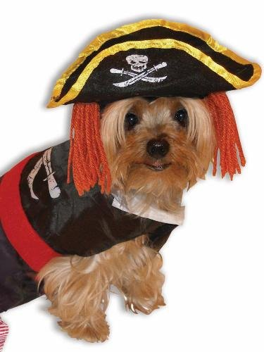 Dog Pirate Halloween Costume