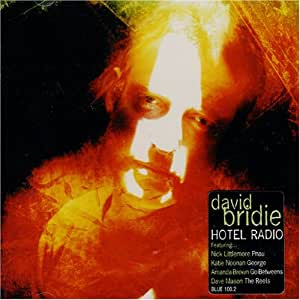 David Bridie Hotel Radio