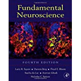 Fundamental Neuroscience, Fourth Edition (Squire,Fundamental Neuroscience)