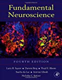 img - for Fundamental Neuroscience, Fourth Edition (Squire,Fundamental Neuroscience) book / textbook / text book