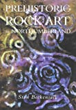Prehistoric Rock Art in Northumberland