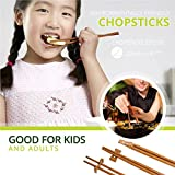 Chinese Chopsticks Set with Holder and Rest, 30 Piece Reusable / Dishwasher Safe Chopsticks kids and adults. Made from 100% Recycled Rice Husk NO PLASTIC by Zone - 365 (10 sets)