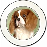 Blenheim King Charles Spaniel Car Tax Disc Holder New Animal, Ref:AD-SKC7T