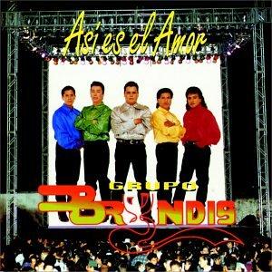 Grupo Bryndis - Olvidemos Nuestro Orgullo Lyrics - Zortam Music
