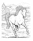 Wonderful World of Horses Coloring Book (Dover Nature Coloring Book) (0486444651) by John Green