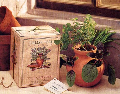 Grow Your Own Italian Herb Garden Kit