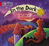 In the Dark: Band 02a/Red A (Collins Big Cat) (0007185529) by Llewellyn, Claire