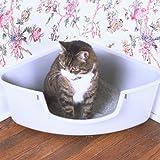 Pioneer Pet SmartCat Corner Litter Box