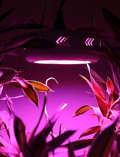zsq-300w-croissance-vegetale-lumiere-led-ufo-spectres-pour-croitre-a-effet-de-floraison-des-plantes-
