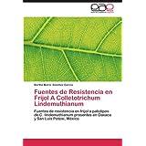 Fuentes de Resistencia en Frijol A Colletotrichum Lindemuthianum: Fuentes de resistencia en frijol a patotipos...