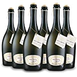 High Quality Prosecco DOC Treviso Frizzante from Artisan Producer Dogarina (Case of 6)