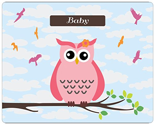 "Rikki Knighttm ""Baby"" Name - Cute Pink Owl On Branch With Personalized Name Design On 10"" X 8"" High Definition Museum Quality Almunimum Print - Metal Art Print - With Floating Block Wall Hangers (Proudly Made In The Usa) front-640514"