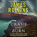 Crash and Burn: A Sigma Force Short Story Audiobook by James Rollins Narrated by Christian Baskous