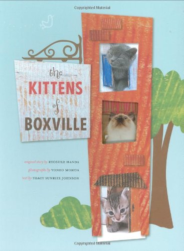 Kittens of Boxville: Ryosuke Handa, Yoneo Morita, Tracy Johnson: 9780811866880: Amazon.com: Books