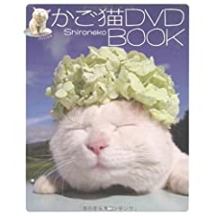 �����LDVD BOOK (DVD�t)