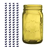 Dress My Cupcake DMC35194 Amber Yellow Vintage Jardin Mason Jar with Navy Blue Chevron Straws, 32-Ounce