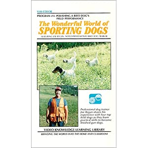 The Wonderful World of Sporting Dogs-Polishing a Bird Dog's Field Performance movie