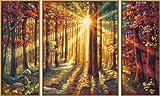 Schipper 609260688 - Malen nach Zahlen - Herbstwald von Noris Spiele Gmbh
