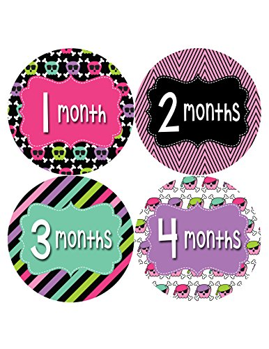 Months in Motion 406 Monthly Baby Stickers Girl Monthly Photo Milestone Month - 1