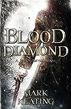 Blood Diamond: A Pirate Devlin Novel (Pirate Devlin 3)
