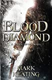img - for Blood Diamond: a Pirate Devlin Novel book / textbook / text book