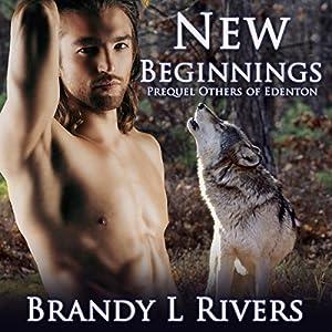 New Beginnings Audiobook