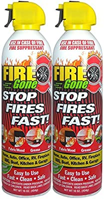 Fire Gone 2NBFG2704 White/Red Fire Extinguisher - 16 oz.