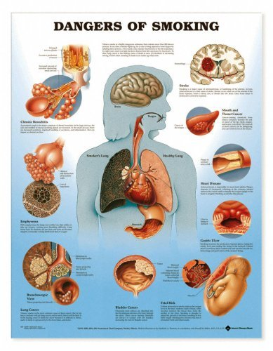Dangers of Smoking Chart