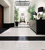 サンゲツ フロアタイル 床材 石目調 ストーン エンペラドール (18枚セット) 型番: IS-526 01S