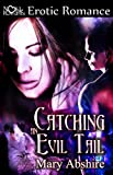 Catching an Evil Tail (Soul Catchers)