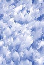 Artscape Clouds Window Film 24
