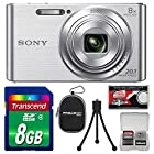 Sony Cyber-Shot DSC-W830 Digital Camera (Silver) with 8GB Card + Case + Flex Tripod + Accessory Kit