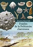 Fossiles de la Préhistoire