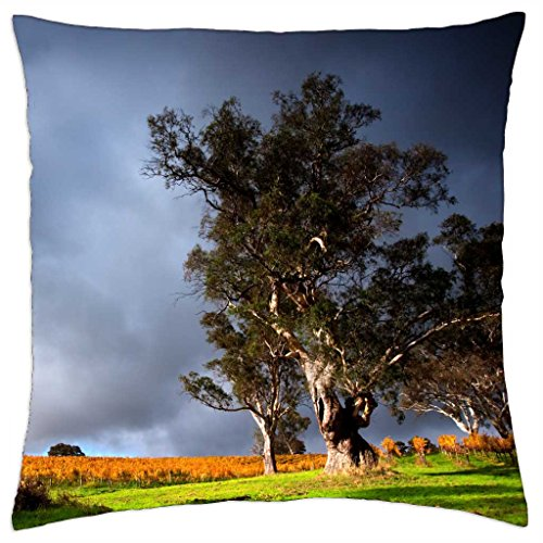 vineyard-under-stormy-skyies-throw-pillow-cover-case-18-x-18
