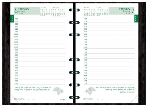 Brownline 2013 EcoLogix CoilPro Daily Planner, Twin-Wire, Black, 8 x 5 Inches, 100% Post-Consumer Recycled Paper, Hard Cover with Twin-Wire Binding (CB410C.BLK-13)