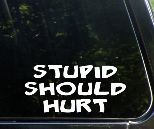 "Stupid Should Hurt (8"" X 4"") Die Cut Decal Sticker For Windows, Cars, Trucks, Laptops, Etc."