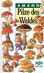 Pilze des Waldes