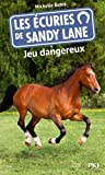 """Afficher """"Les écuries de Sandy Lane n° 6<br /> Jeu dangereux"""""""