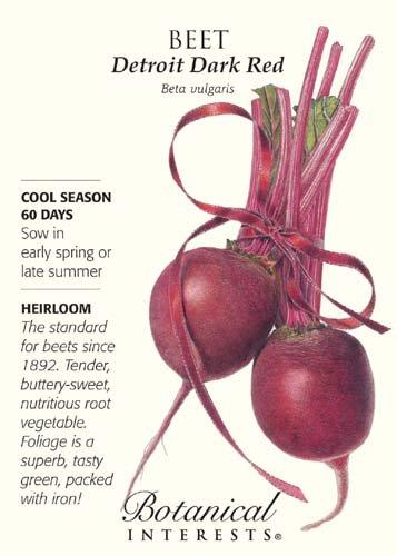 Detroit Dark Red Beet Seeds - 4 grams - Botanical Interests