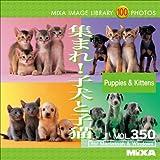 MIXA IMAGE LIBRARY Vol.350 集まれ!子犬と子猫