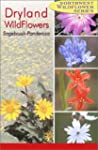 Northwest Dryland Wildflowers: Sagebr...